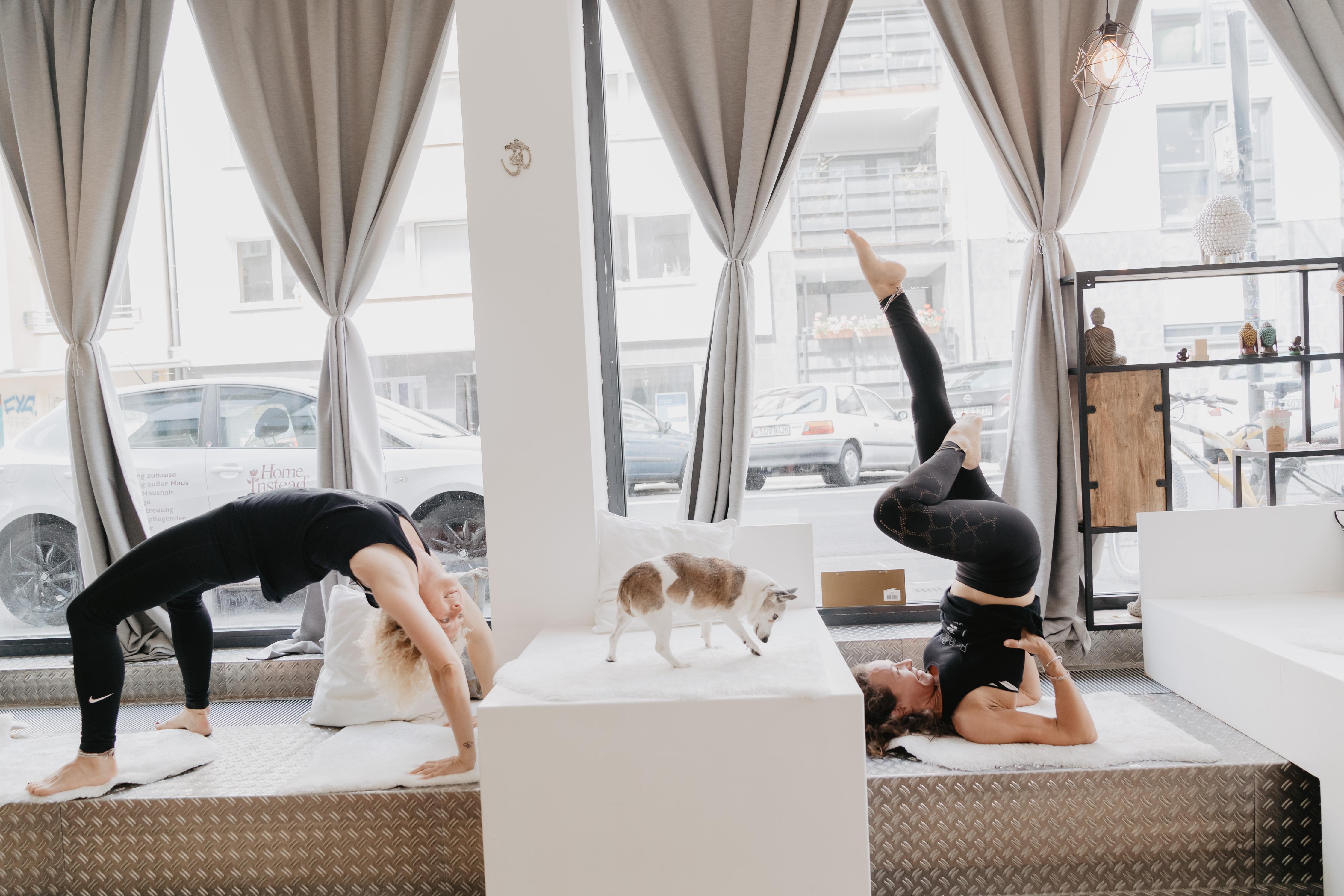 Mindful Yoga – Neuer Präventionskurs
